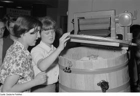Vaskerimuseet i Eberswalde