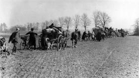Ole Steen Hansen: Tyskernes katastrofe
