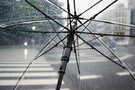 Paraplybutikken i Steglitz