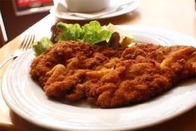 Schnitzelleksikon